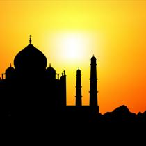 Taj Mahal e cammello al tramonto