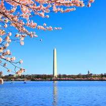 Vista del monumento a Washington