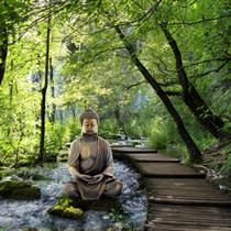Buddha nel verde