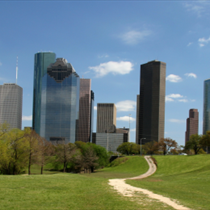 Parco con sfondo città