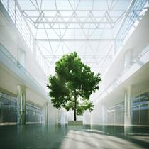 Atrio moderno con albero