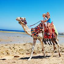 Bambini sul cammello