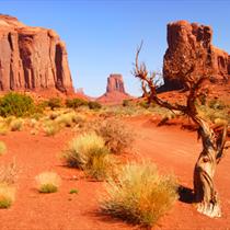 Navajo park