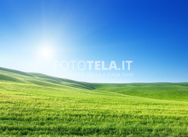 Foto Di Prato Fototelait